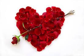 Les langloiseries l 39 informaton locale de commequiers les langloiseries - Saint valentin fleurs ...